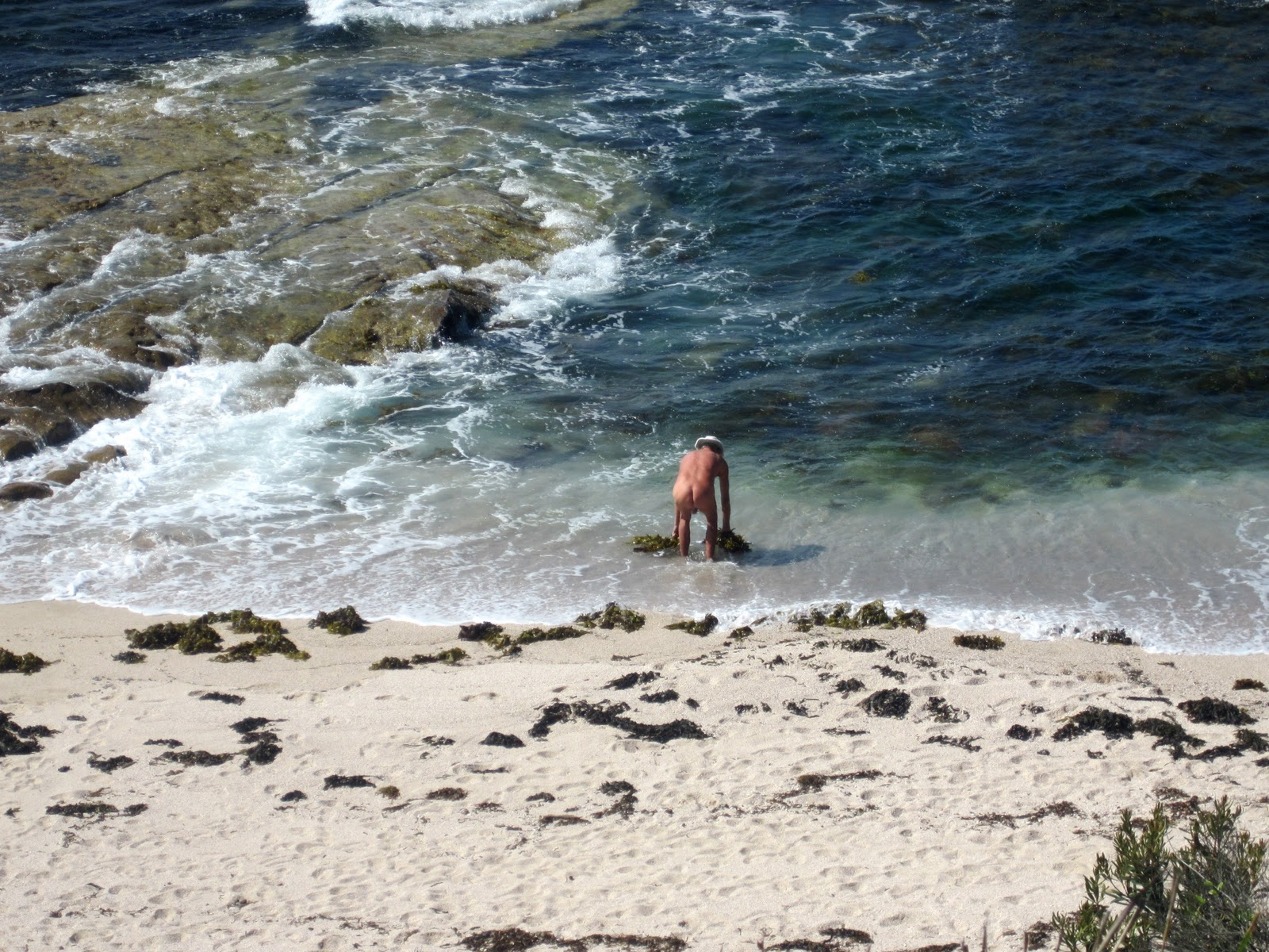 Sydney Daily Photo Small Beach On Jibbon Headland-4892