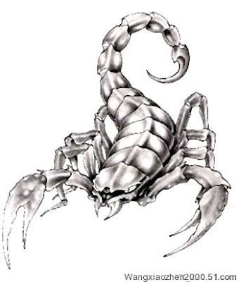 cool Scorpion tattoo