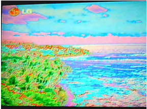Defecto tipo mosaico en televisores LCD.