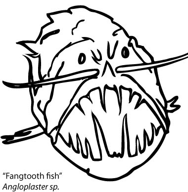 Octopod Adventures: Coloring Fangtooth Fish