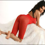 Bollywood Spicy Bikini Queen Sherlyn Chopra Hot Pictures