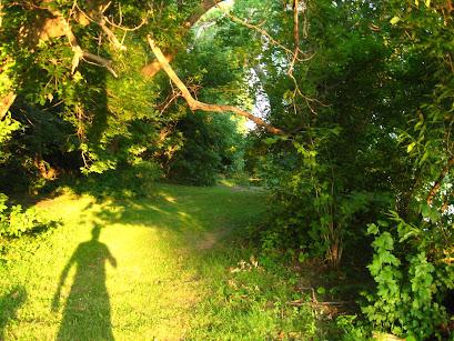 Image result for johnpiippo solitude