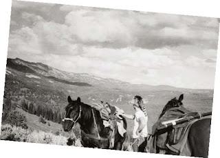 Old Santa Fe Trading Co