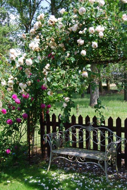 Mon jardin mes merveilles petit tour du propri taire - Petit jardin romantique tours ...