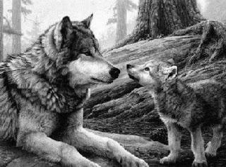 Lobos en el campo de batalla