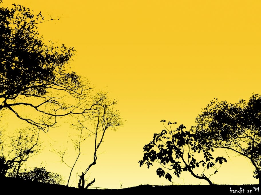bandit Siluet Pohon