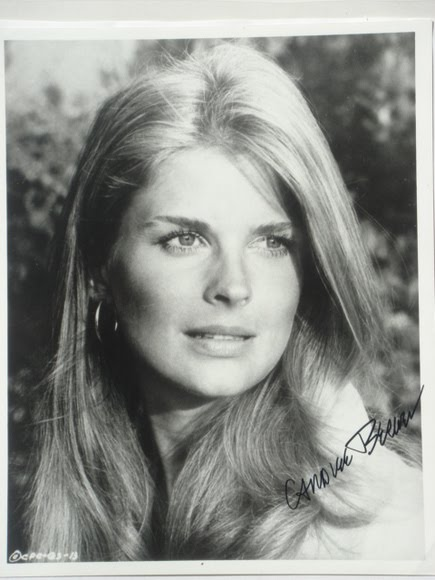 Northern Girl With A Southern Soul Candice Bergen