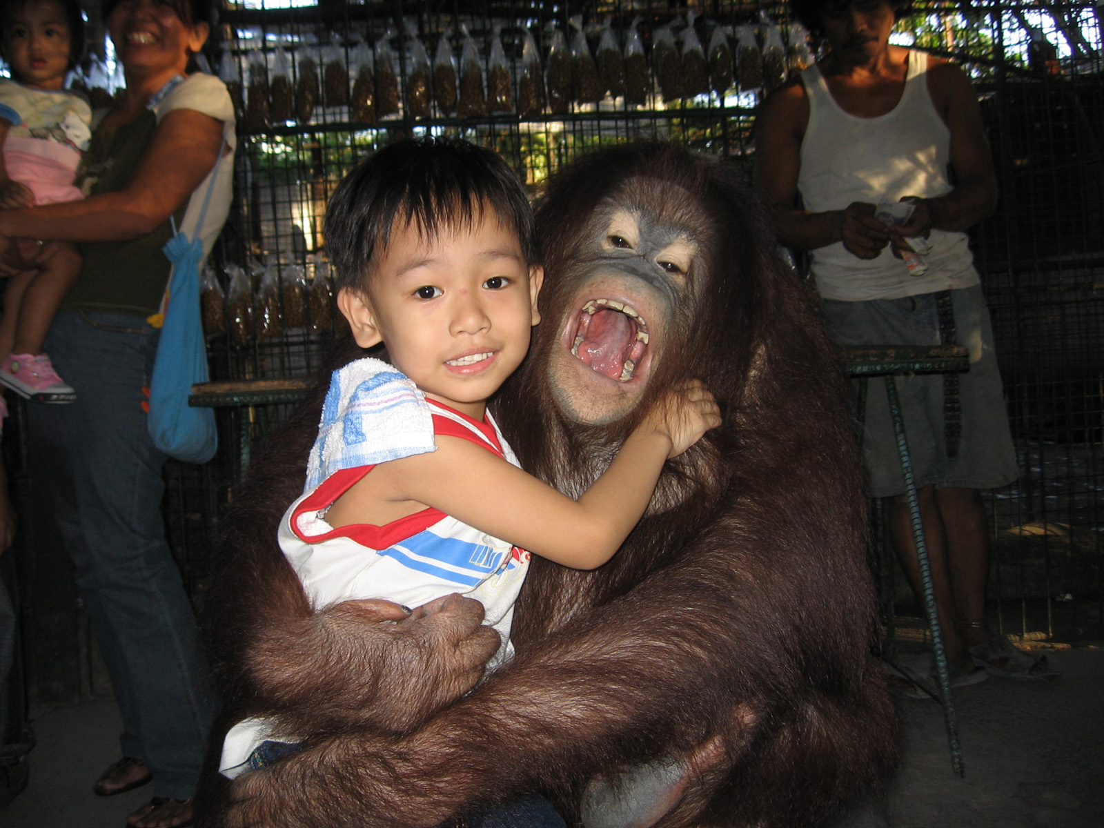 Malabon Zoo; a collection of endemic Philippine animals