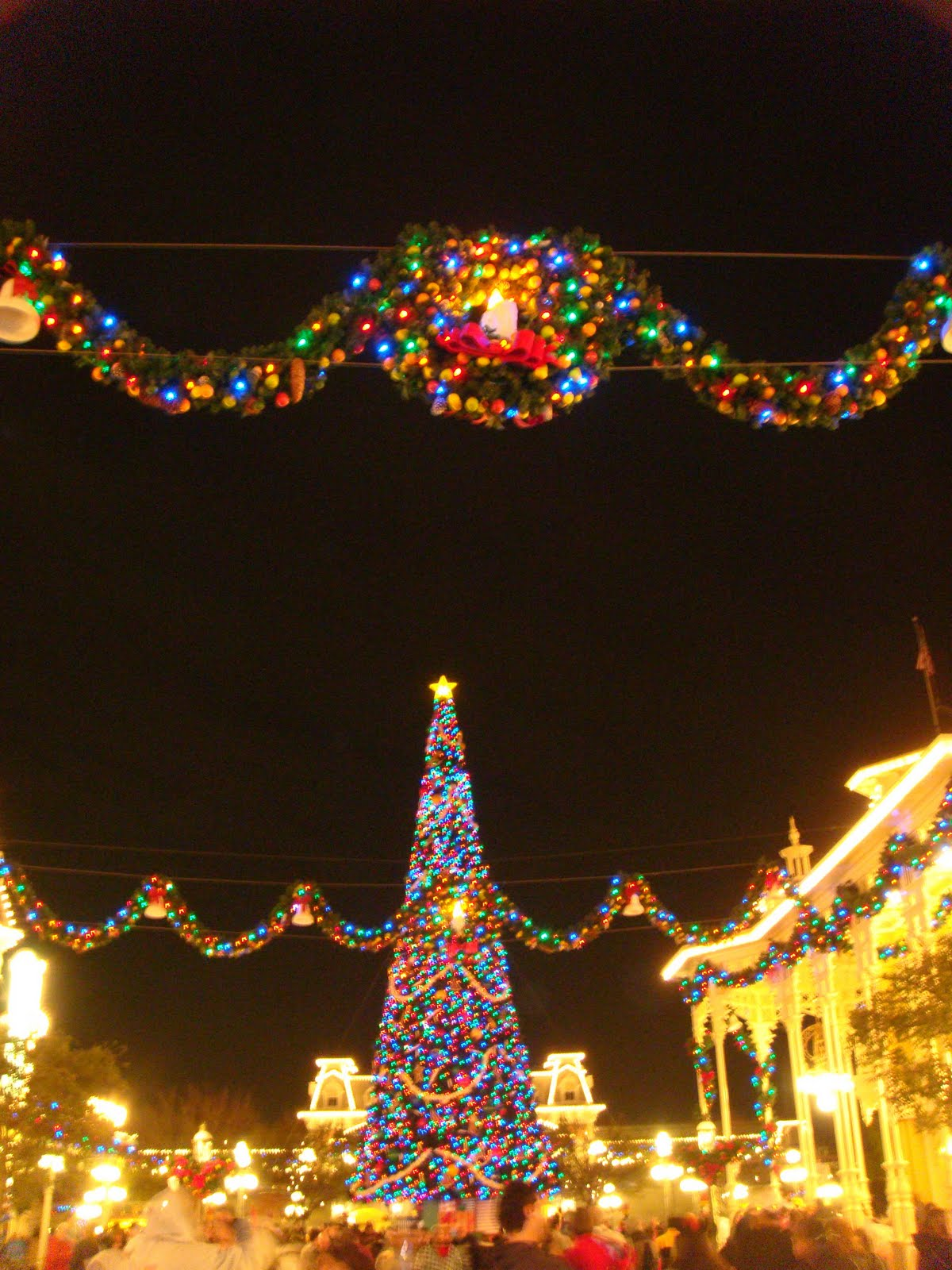 Jules Travel's Diary: Christmas experience @ Disney World ...
