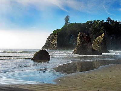 Margy S Musings Washington State