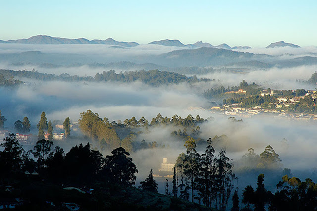 Snow fall in the Morning - Ooty