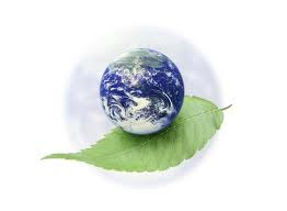 25 consejos para cuidar el medio ambiente