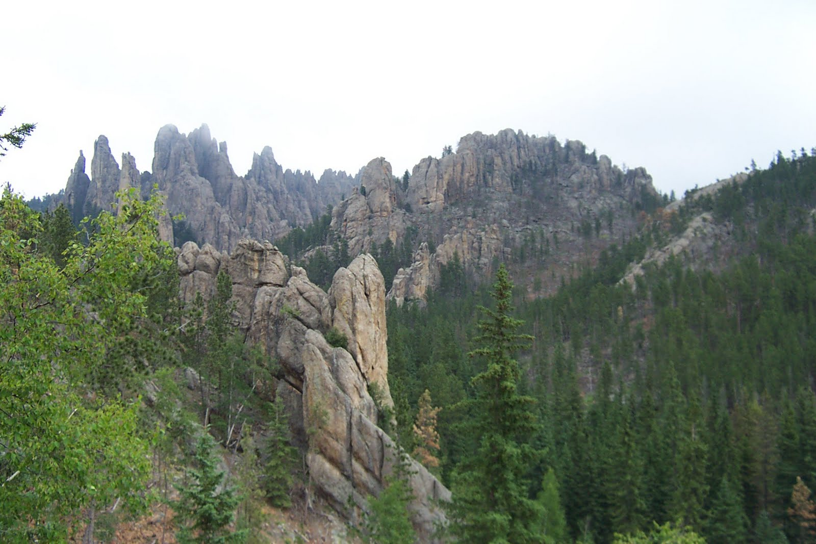 Devils Tower Wy >> Pictures from North and South Dakota/Devil's Tower, WY: July 2010: Mt. Rushmore, Black Hills ...