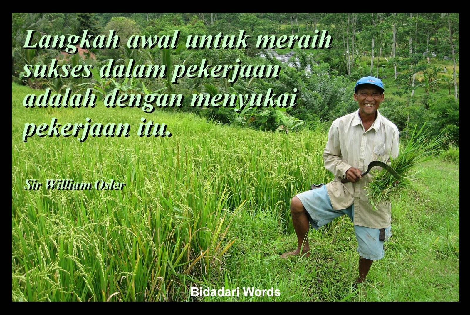 Kata Kata Sedih Anak Petani Cikimmcom