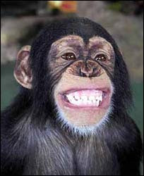 Items similar to Cute monkey and flower clipart - Big ... |Monkey Big Smile