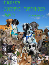 My Goodbye Puppyhood Pawty