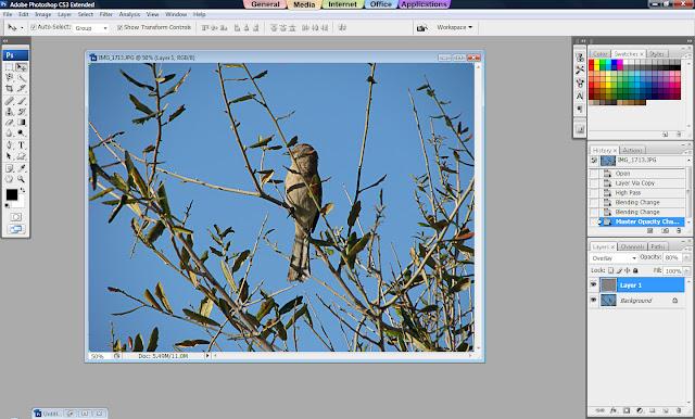 Photoshop Tutorial, How to Sharpen Your Photos, Sharp Images, Sharp Photos, Blend Mode, Overlay Blend Mode