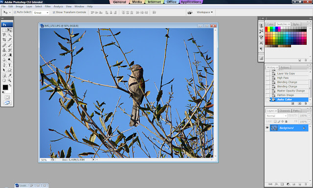 Photoshop Tutorial, How to Sharpen Your Photos, Sharp Images, Sharp Photos, Sharpened Image