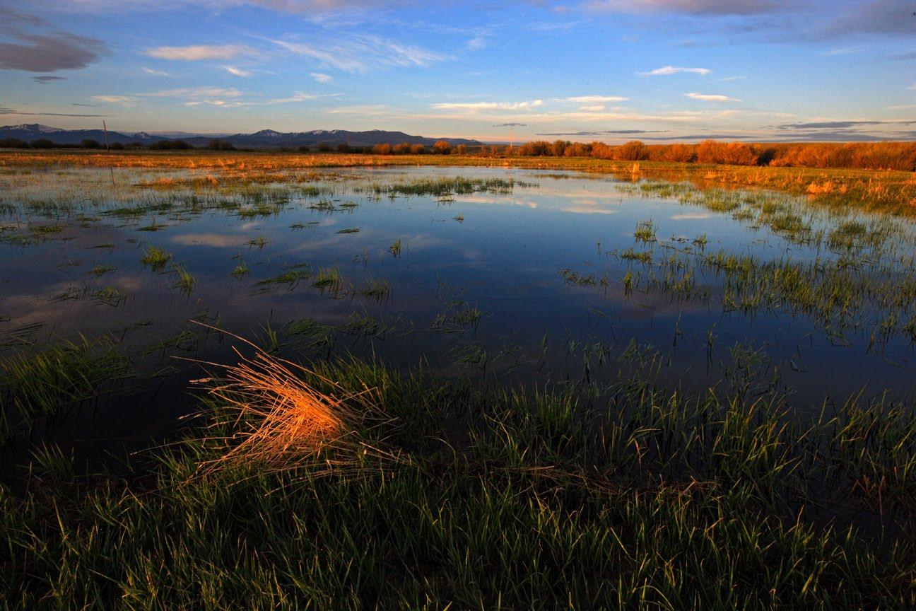 Ken Papaleo X Marks The Shot Sunrise Amp Sunsets In Walden