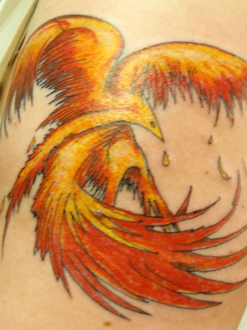 Phoenix Tattoos Pics and Meaning | Tattoos Photo Gallery