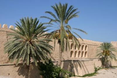 Baie fată El Jadida pe hartă, Tunisia, locație