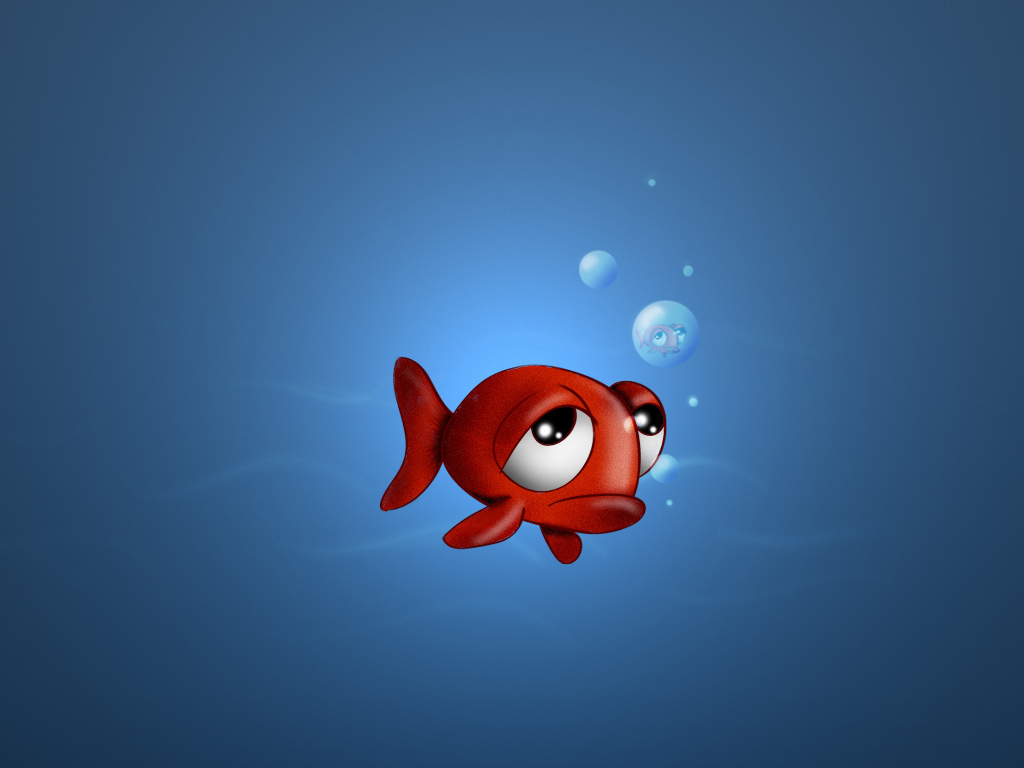 Wallpapersku funny 3d animals wallpapers - Funny animal wallpapers ...