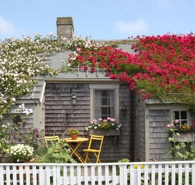 Nantucket houses dressed in roses coastal decor ideas for Nantucket property for sale