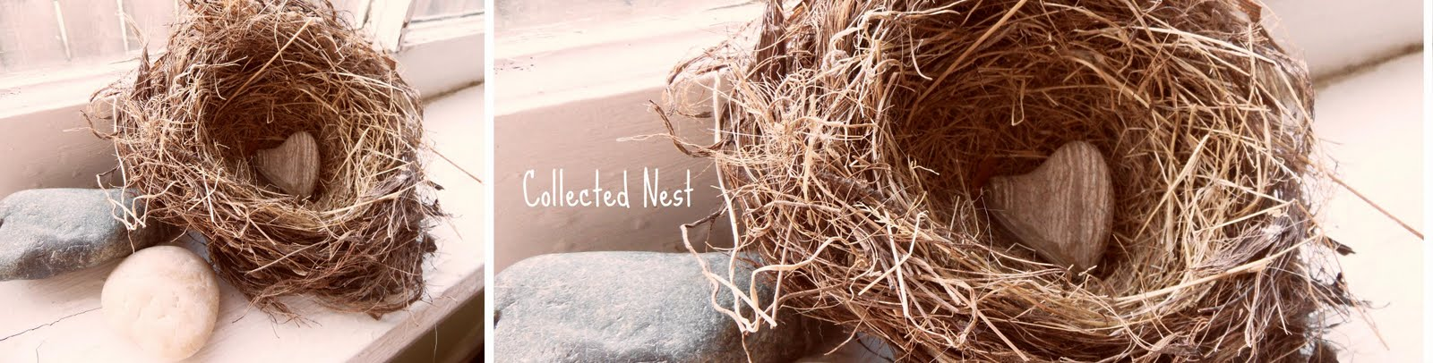 Collected Nest