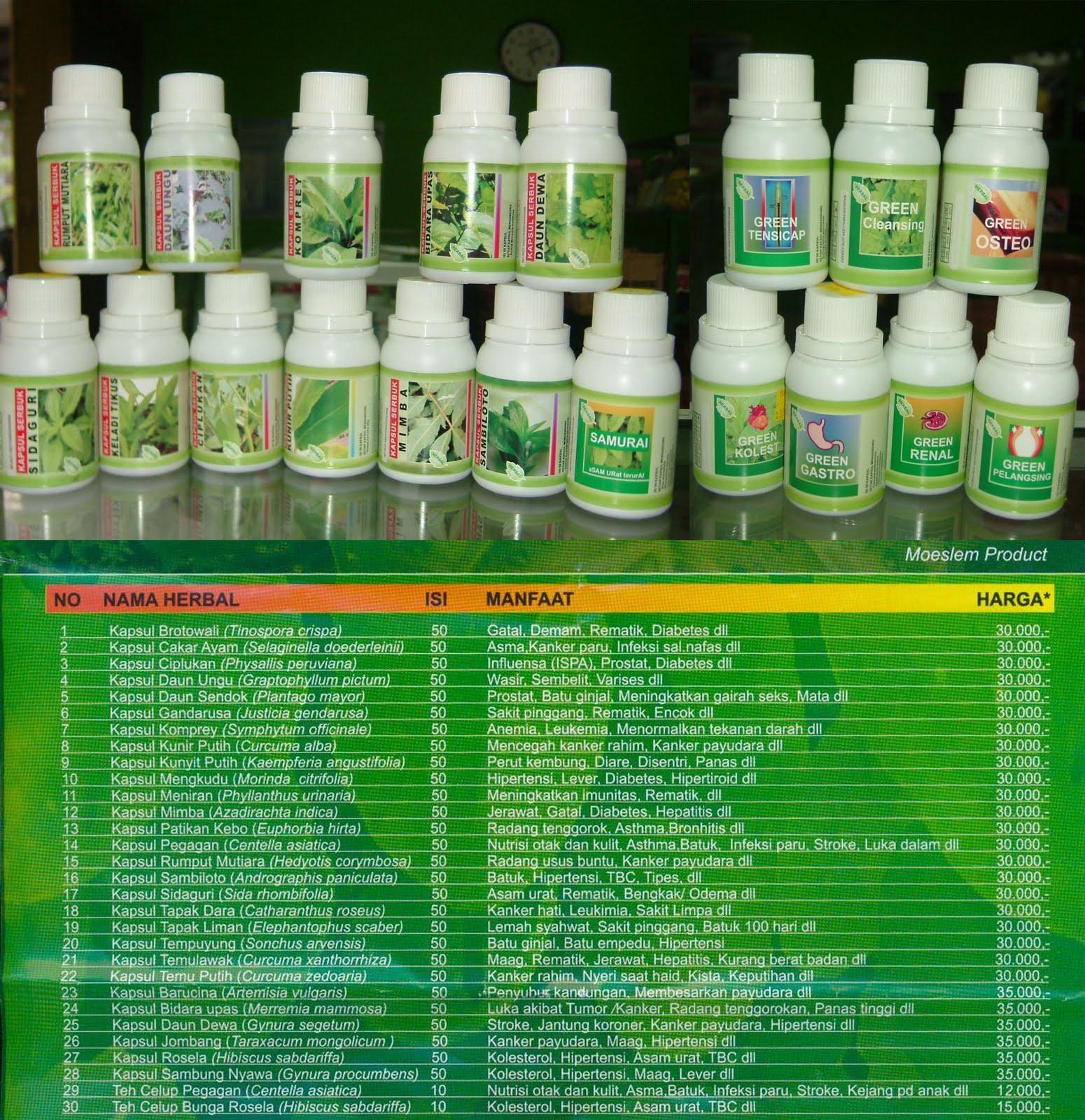 Indo Nesian Tradisi Onal Medicine Suruhan Obat: Jamu Dan Herbal MASTANI: Obat Herbal