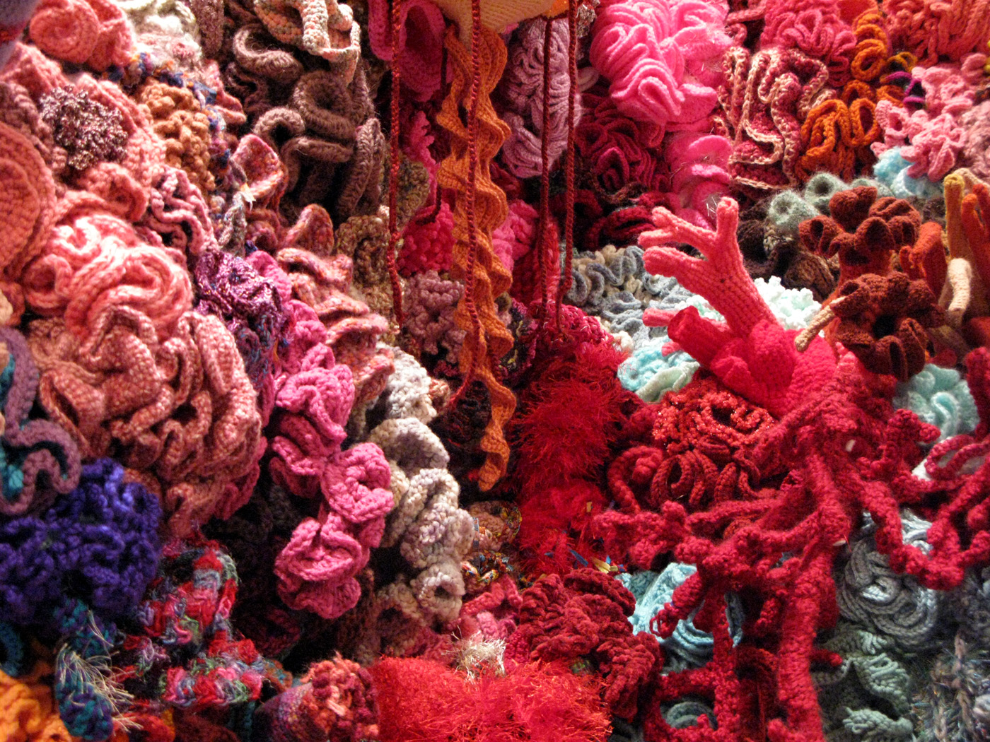 Image Result For Coral Colored Page