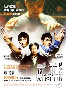 Wushu the young generation