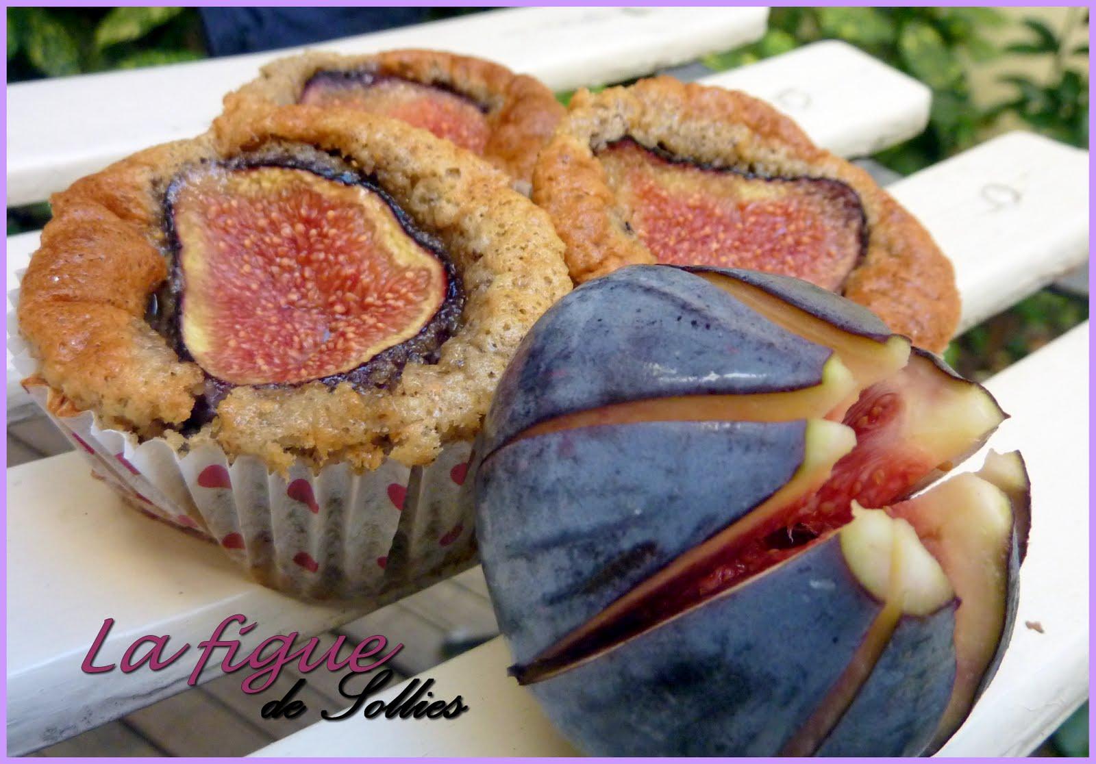 Cake aux figues de sollies