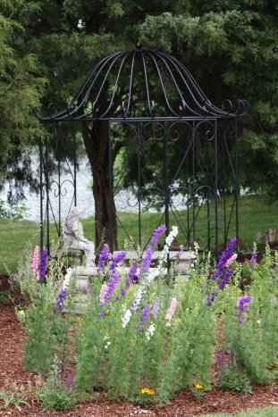 Gardenseed Larkspur Giant Imperial Mix