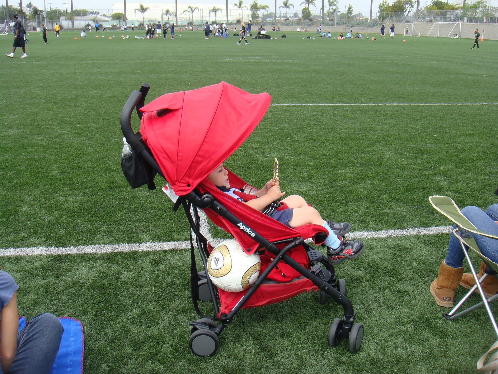 StrollerQueenReviews: Aprica Cadence Stroller Review