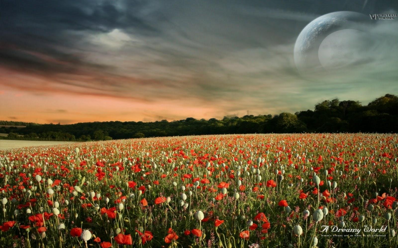 Paisajes y planetas imagenes hd elegantes wallpapers 32 - Windows 8 1 wallpaper hd nature ...