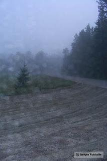 paysage brume et pluie