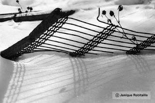 hiver photographie noir et blanc