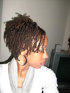 Mini Twists On Natural Hair Curlynikki Natural Hair Care