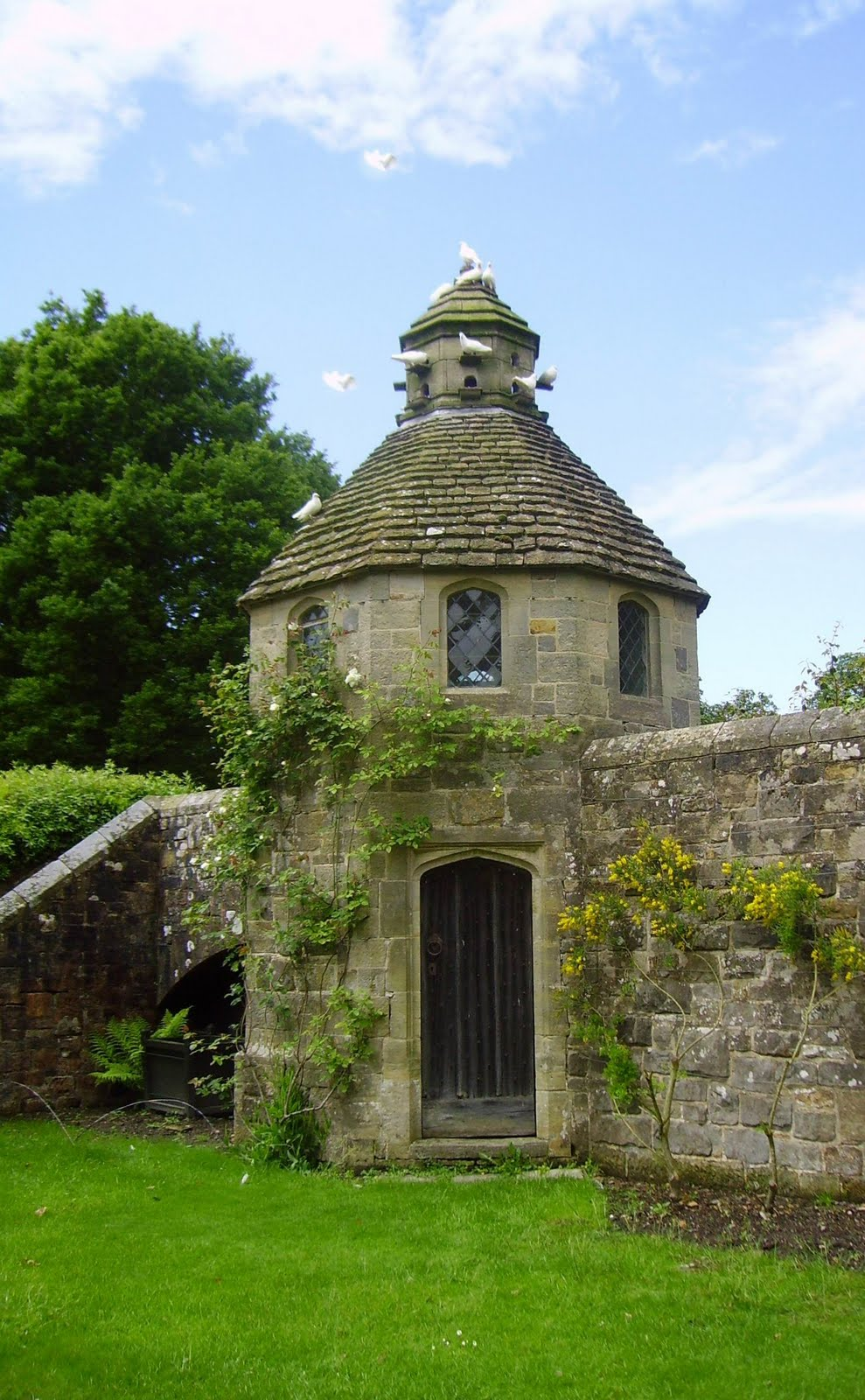 Willowbrook Park The Dovecote
