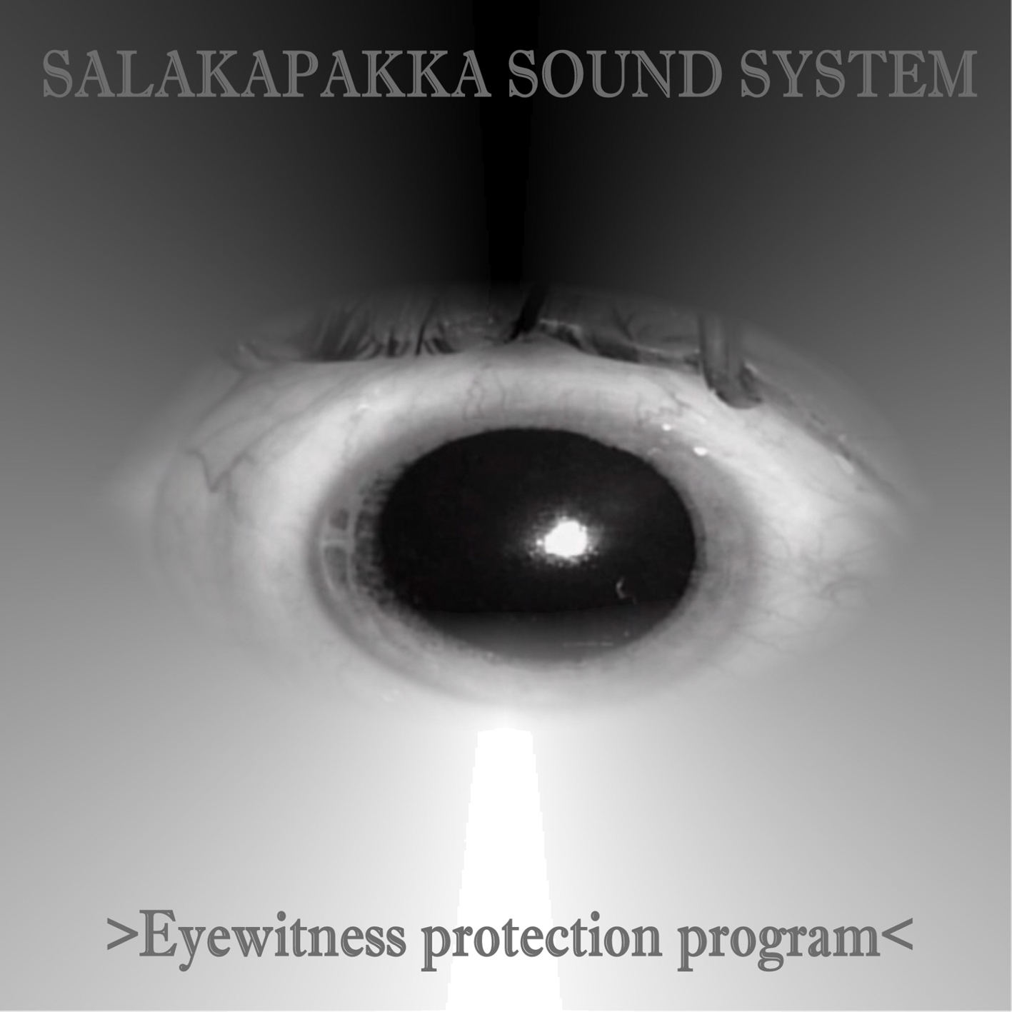 Ikuinen Kaamos 2011 Light2sound Ldr Synth Make Head Over At Spettro To Get Brand New Salakapakka Sound System Web Album Eyewitness Protection Program Collection Of Tracks Made In 2010 Which Did Not