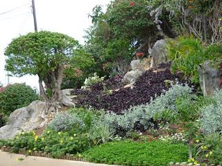 Jardin eneida cabo rojo de puerto rico pal mundo for Jardin xanadu puerto rico