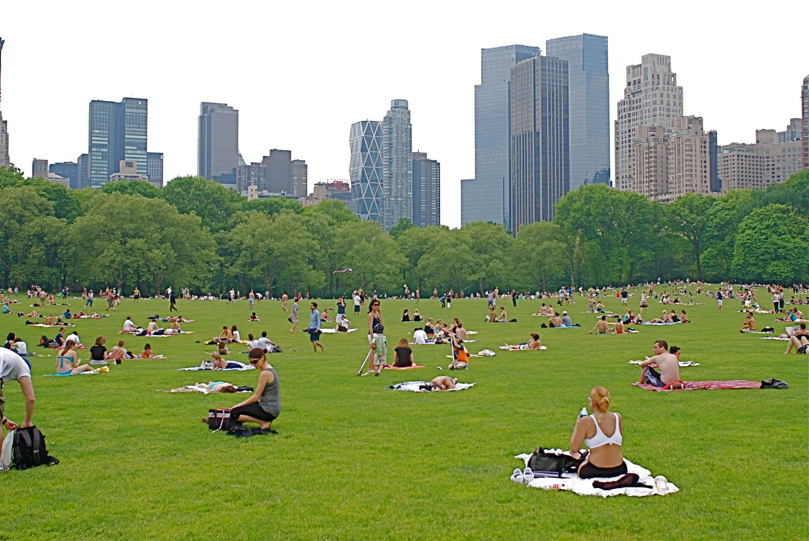 Cloves Nyc Nyc Sunbathers In Sheep Meadow Central Park