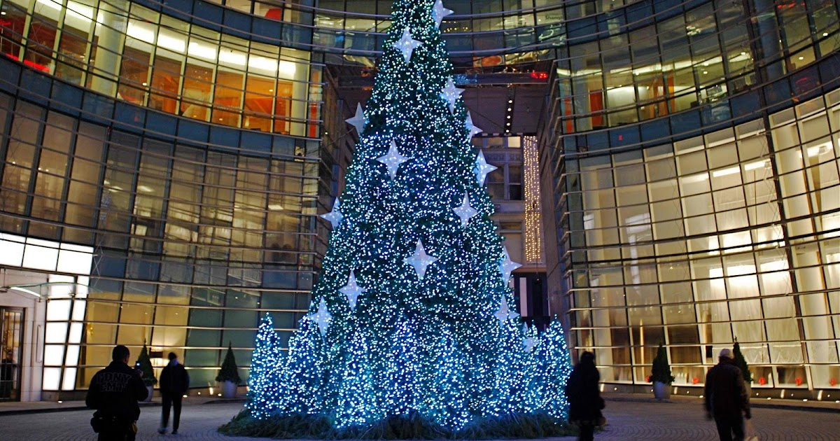 Christmas Trees In New York City