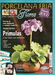 Porcelana fria Nro. 6 Flores