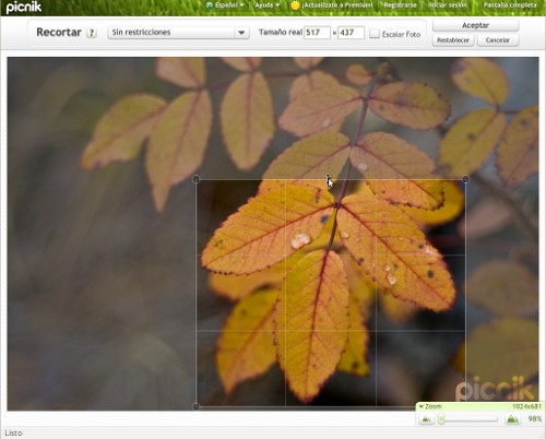 Para el tratamiento de las imágenes en los blog Picnik 9
