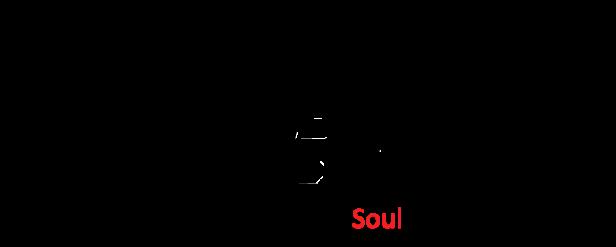 SoulBerry Shop: Curve 8520/8530 housing