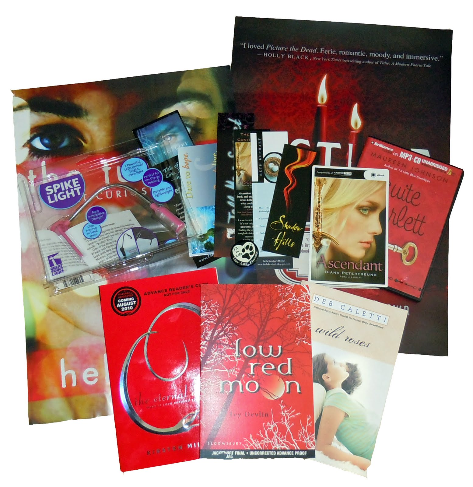 Giveaway: BEA Prize Packs
