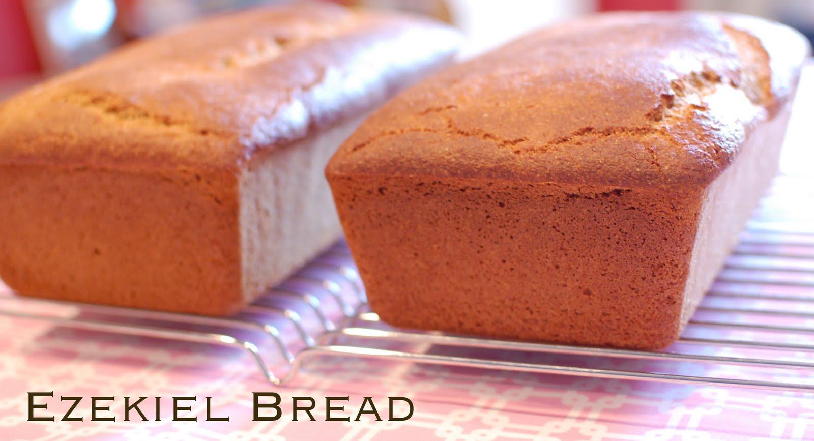 Ezekiel Bread A Small Snippet