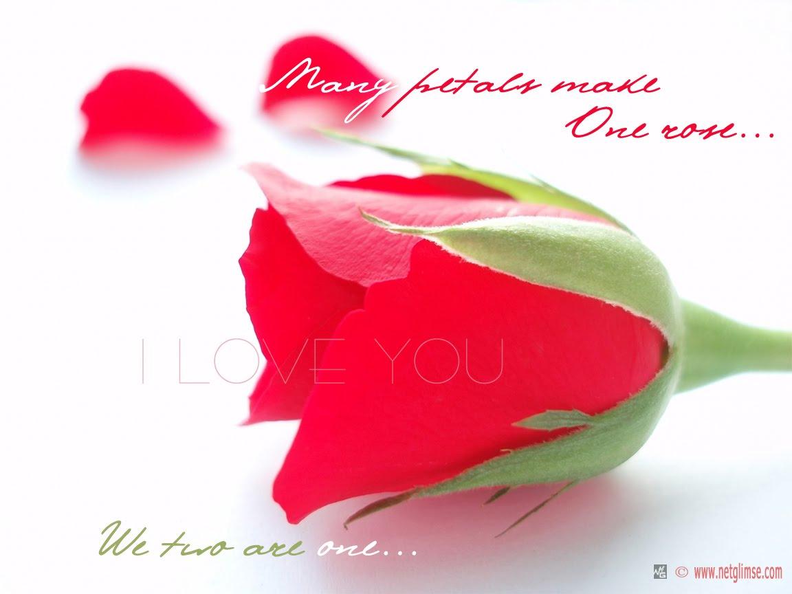 Love U So Much Image Rahchi14 Rahchi14 Beauteous Birthday Quotes