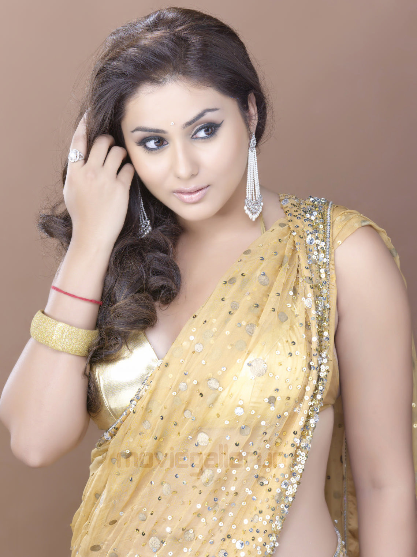 Namitha Hot Saree Photo Shoot Pics, Namitha Photo Shoot -3258